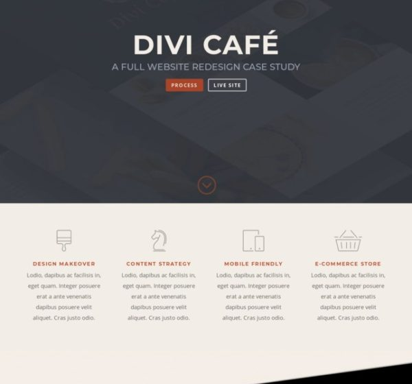 woo-themes-plugins_divi-theme-woocommerce-incontournable-1