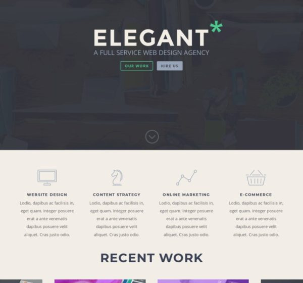 woo-themes-plugins_divi-theme-woocommerce-incontournable-3