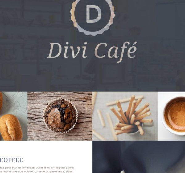 woo-themes-plugins_divi-theme-woocommerce-incontournable-6